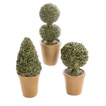 Darice Fairy Garden Plants: Potted Shrubs And Topiaries Assorted
