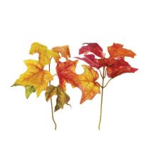 Darice Fall Leaf Picks Maple Leaves 2 Assorted