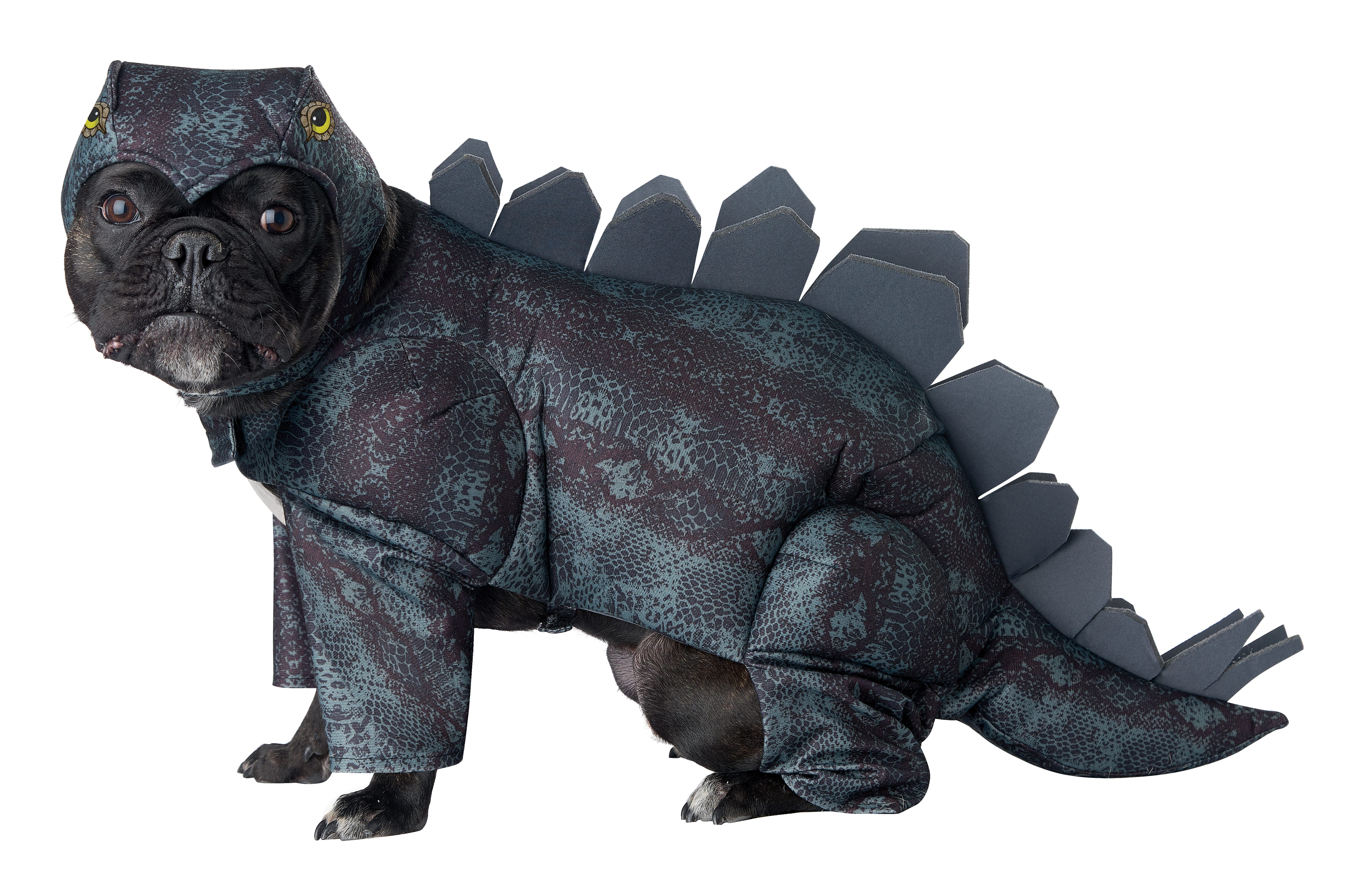 California Costumes Collections Stegosaurus Dog Costume, Large