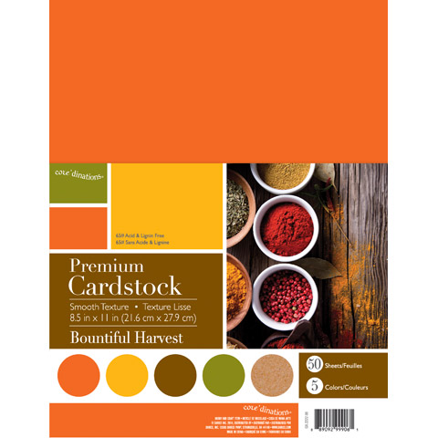 Darice Core'dinations Smooth Cardstock Bountiful Harvest 8.5 X 11 Inches