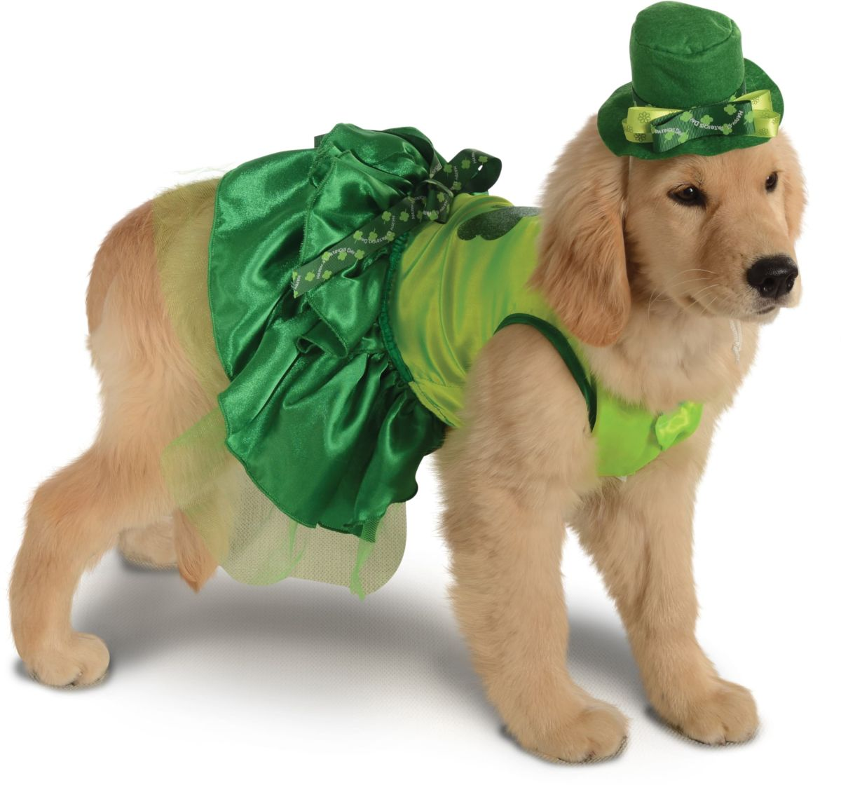 Rubies Lucky Dog Pet Costume, Meduim